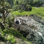 Valley Isle Excursions: Road to Hana